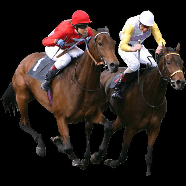 Best Online Horse Racing Sites in Singapore