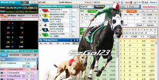 Singapore trusted betting site