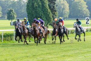 Profitable Horse Racing Betting